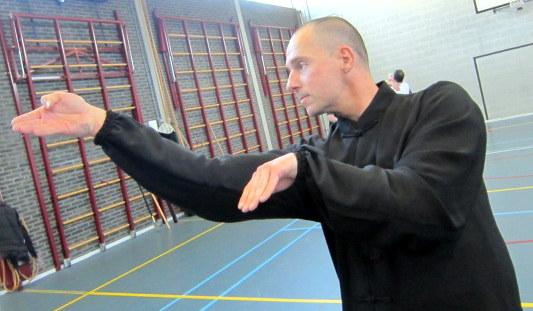 虎鶴雙拳 Tijger Kraanvogel